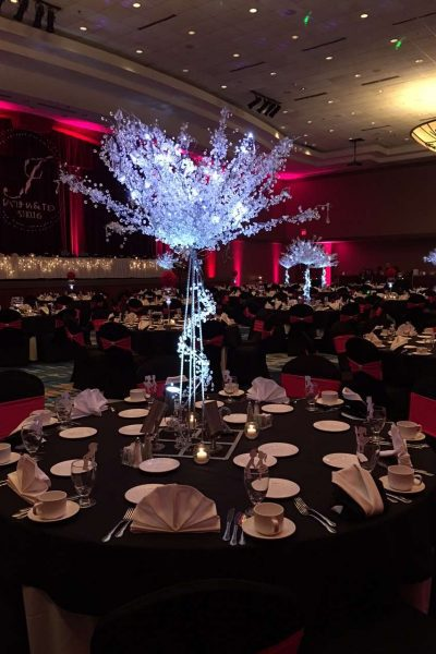 Dazzling centerpiece at the Radisson Hotel and Conference Center wedding in Green Bay
